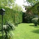 bahçe bakımı