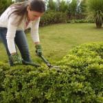 bahçe bakımı2